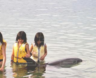 イルカと女の子の写真・画像素材[1163080]