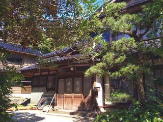 日本家屋と庭木の写真・画像素材[1169730]