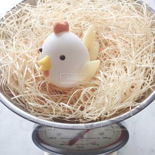 はかりとにわとり卵の写真・画像素材[1201012]