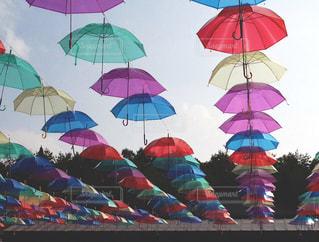 空,傘,屋外,緑,赤,カラフル,青,紫,鮮やか,樹木,屋根,いっぱい,たくさん,梅雨,カラー,色,黄,奥行き,並ぶ,複数,フォトジェニック,インスタ映え