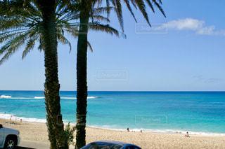 ハワイのビーチの写真・画像素材[1388811]