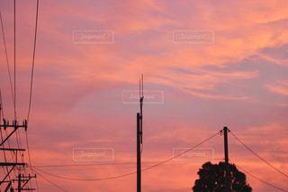 空,屋外,ピンク,雲,夕焼け,夕暮れ,電線,自宅,フォトジェニック