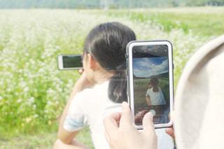 蕎麦畑の写真・画像素材[1464315]