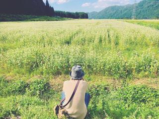 女性,自然,風景,空,屋外,緑,雲,後ろ姿,山,景色,石川県,ドライブ,蕎麦,秋空,お出かけ,蕎麦畑,蕎麦の花,眺める,フォトジェニック,白山市