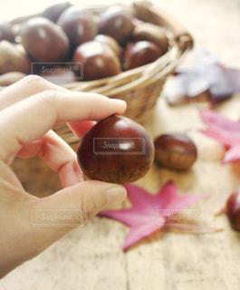 食べ物,秋,紅葉,栗,手,葉,木の実,カゴ
