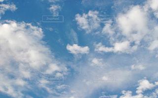 風景,空,秋,屋外,雲,青空,虫,トンボ,昆虫,秋空,複数