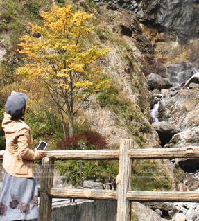 秋色の写真・画像素材[1584215]