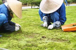 兼六園の草取り作業の写真・画像素材[1615774]