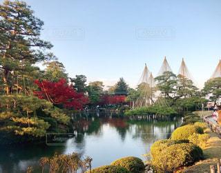 紅葉と霞ヶ池の写真・画像素材[1646765]