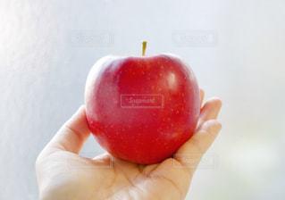 真っ赤なりんごの写真・画像素材[1796037]