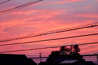 ある夏の夕暮れの写真・画像素材[1807399]