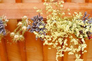 花,屋内,緑,カラフル,黄色,ドライフラワー,ラベンダー,天井,イエロー,黄,yellow,吊るす,スターチス,多色