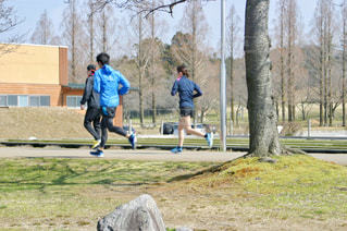 女性,男性,3人,20代,30代,公園,スポーツ,屋外,緑,青,走る,樹木,人,ジョギング,ランニング,健康,運動,トレーニング,ラン,ライフスタイル,3,スポーツウェア