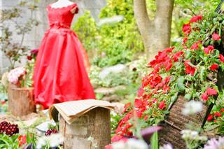 赤いドレスの写真・画像素材[2169264]