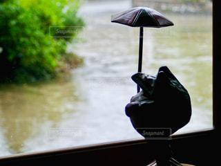 雨の日の写真・画像素材[2188426]