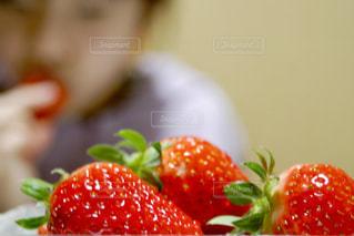 おいしいいちごの写真・画像素材[3219387]