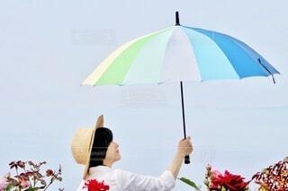 傘の写真・画像素材[4657075]