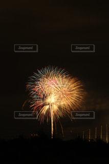 夜空の花火の写真・画像素材[1310346]