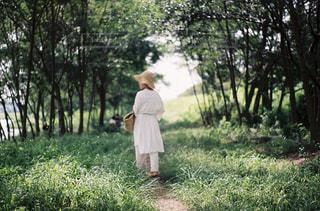自然,風景,屋外,森,緑,植物,晴れ,海辺,散歩,少女,光,樹木,人物,人,フィルム,レジャー,野外,フィルムカメラ,草木,お出かけ