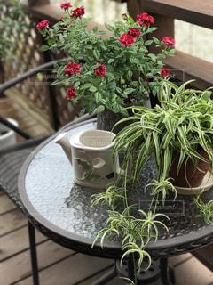 ガーデンテーブルセットとミニ薔薇 - No.737703