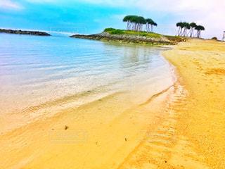 水の体の横にある砂浜のビーチの写真・画像素材[901819]