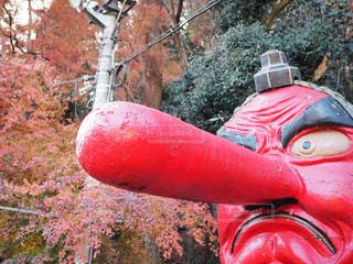 赤い消火栓の写真・画像素材[909117]