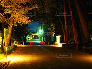 夜の街の景色の写真・画像素材[910760]