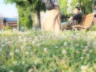 庭に座っている人 - No.1219394
