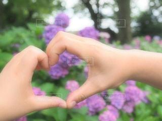 花を持っている手の写真・画像素材[1257563]