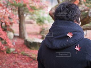 男性,20代,秋,紅葉,後ろ姿,背中