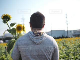 男性,ひまわり,黄色,イエロー,ひまわり畑,yellow,告白,花ひろば