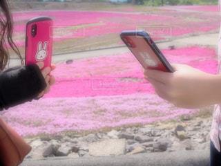 ピンクの傘を持つ手の写真・画像素材[3259376]