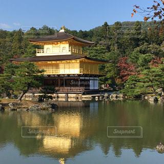 水面に映る金閣寺。の写真・画像素材[906250]
