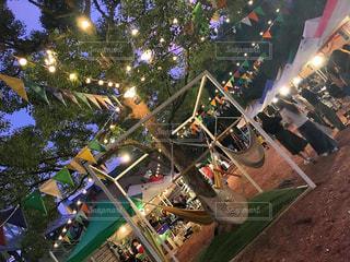 クリスマス ツリーの写真・画像素材[717326]