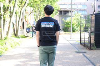 パタゴニアのTシャツの写真・画像素材[1207580]