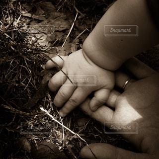 屋外,親子,手,人物,人,ママと子供