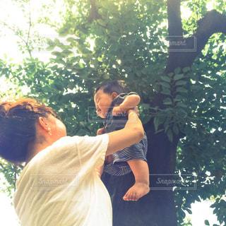 自然,親子,光,樹木,愛,日中,ママと子供