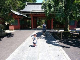 屋外,神社,樹木,お参り,こもれび