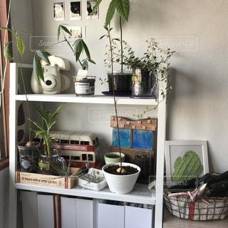 キッチン カウンター上の花瓶の写真・画像素材[1020410]