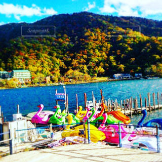 中禅寺湖のスワンボート - No.870102