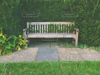 草の中に座っている木製の公園のベンチ - No.730475