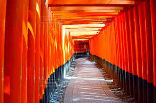赤い傘の部屋の写真・画像素材[762259]