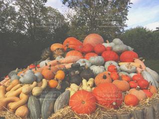果物と野菜スタンドのグループの写真・画像素材[789224]