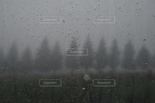雨の日のぼやけた画像 - No.811788