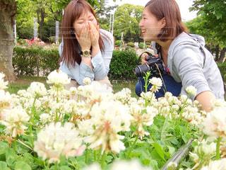 庭園の人々 のグループの写真・画像素材[825834]