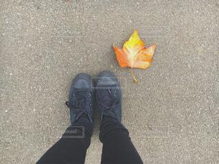 靴のペアの写真・画像素材[840467]