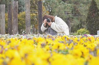 黄色の花の人の写真・画像素材[1142373]