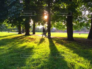 緑豊かな緑のフィールドに立つ人々 のグループの写真・画像素材[1204057]