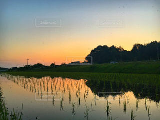 水の体に沈む夕日の写真・画像素材[1239207]