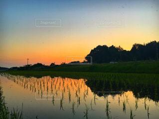 水の体に沈む夕日の写真・画像素材[1272497]